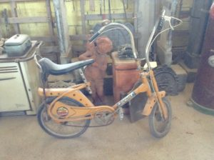 Bici chopper (Bo cross)